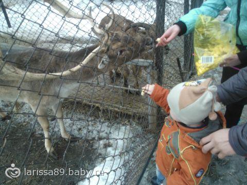 Наш первый поход в зоопарк)))) фотоотчет