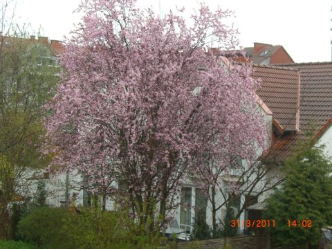 не думала, что весной может быть лето))))))))