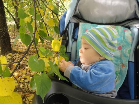 Уррра!!! Моему сынуле сегодня 8 месяцев!!!