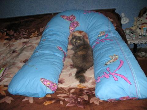 Вот она, моя подушечка!