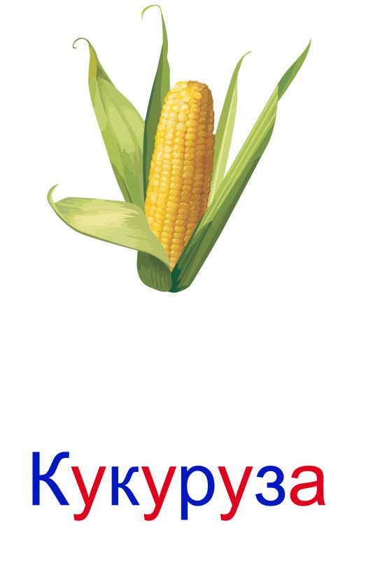 Любимая, картинка овощи с надписью