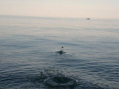 Мы были на море!!!