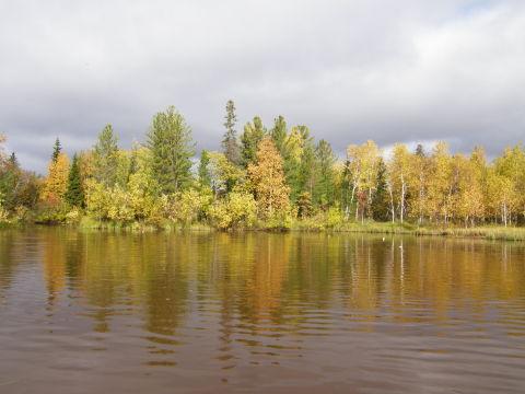 Хочу на север (фото)